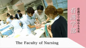 The Faculty of Nursing