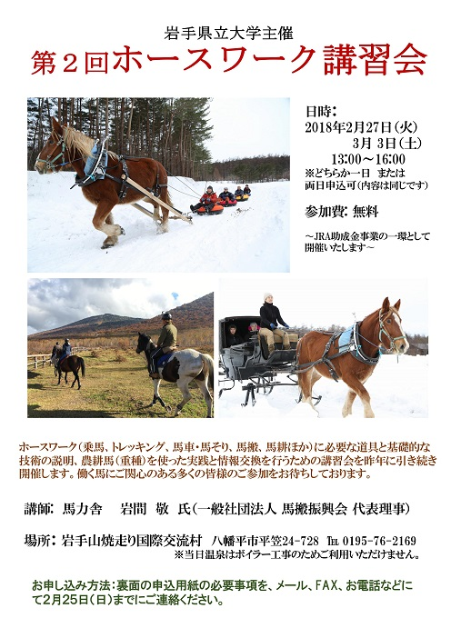 h29horsework1.jpg